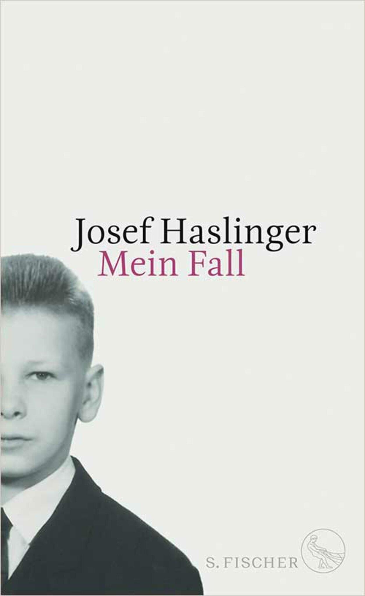 SJosef Haslinger, Mein  Fall