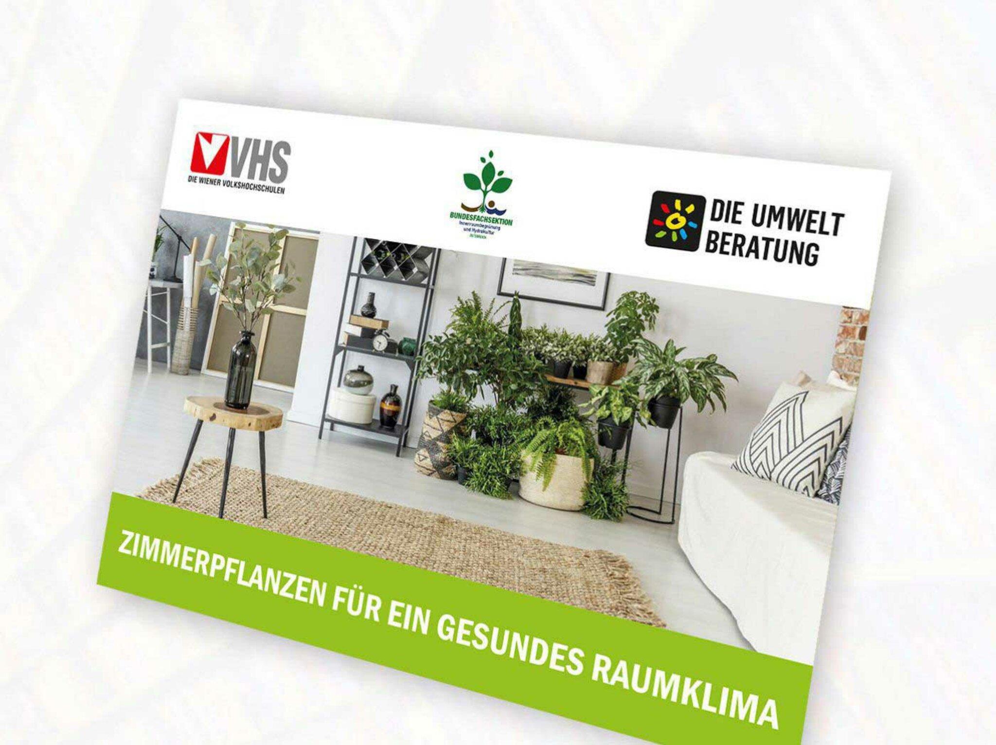 Zimmerpflanzen-Poster